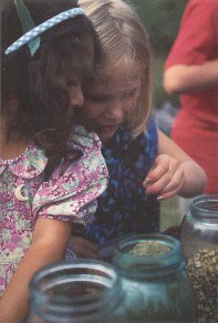 Children making tea at Nature and Spirit Camp - photo: Michael Phillips